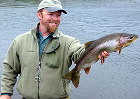 Chip King Alaska Rainbow Trout